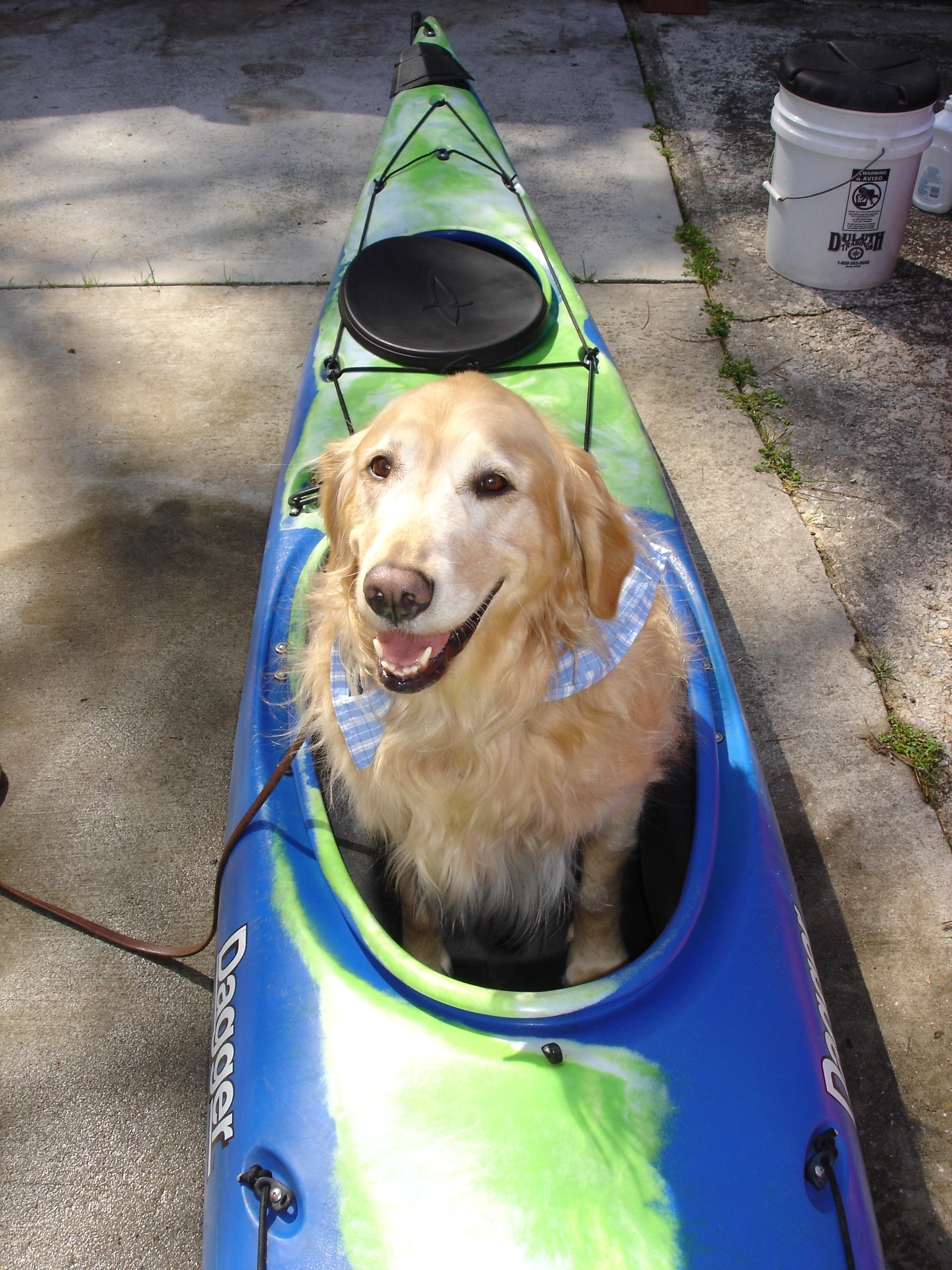 gracie-in-kayak